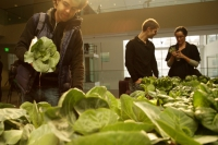 CityFarm project - 18 square meters produces food for 300 peoples in 1 month with virtually no water