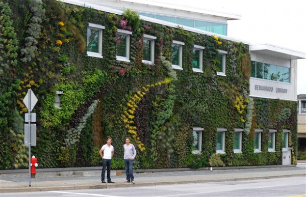 Living Walls improve the air quality and the buildings interiors climatic conditions